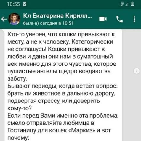 peredergka-koshek-v-moskovskoy-oblasti-markizhotel.ru