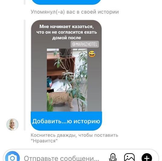 kotofoto-123-markizhotel.ru