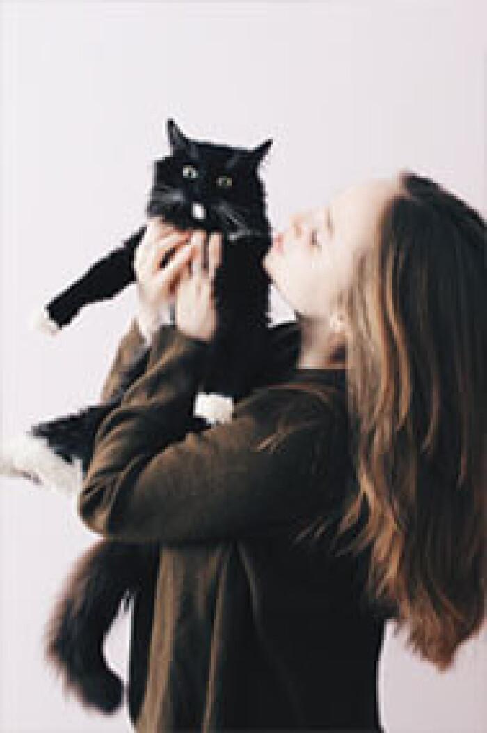 Фото кошки «Софи»