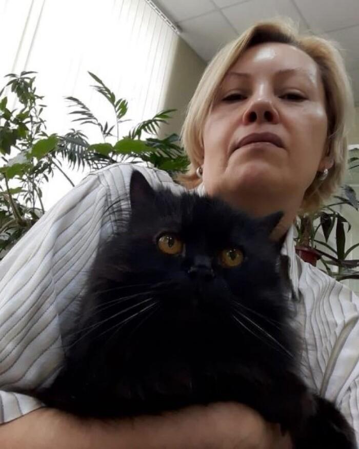 Котофото 128 — Гостиница для кошек «Маркиз»