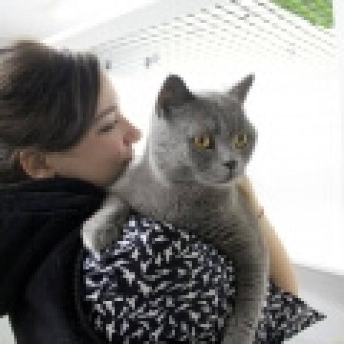 Фото кошки «Cима»