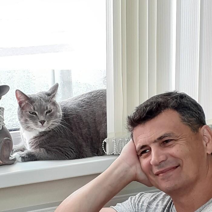 Котофото 73 — Гостиница для кошек «Маркиз»
