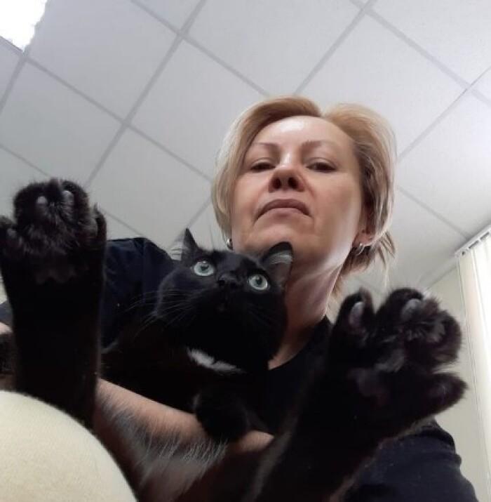 Котофото 124 — Гостиница для кошек «Маркиз»